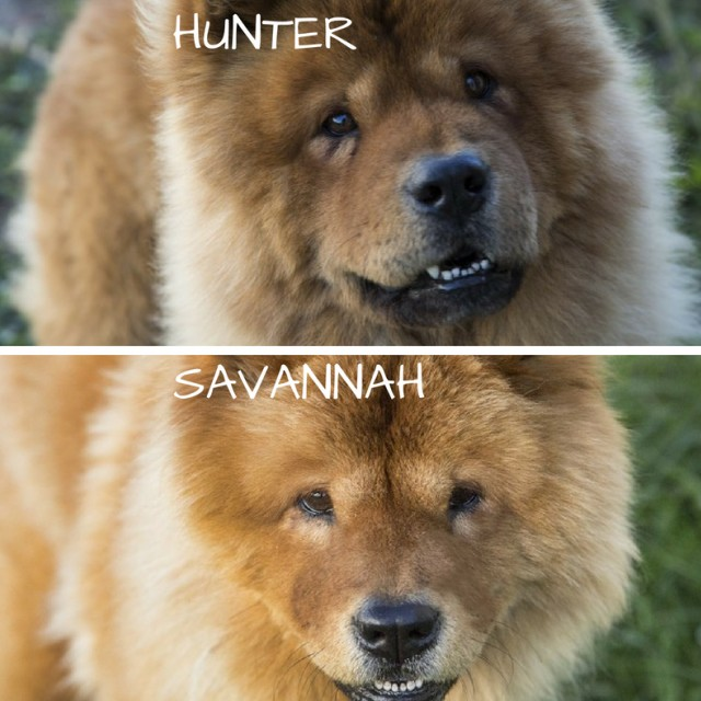 Hunter and Savannah